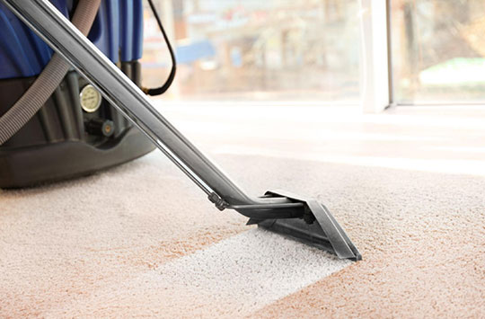 best carpet cleaners in Ashgrove