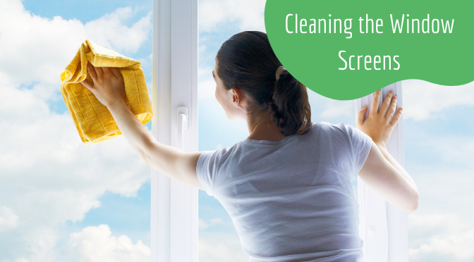 Cleaning the Window Screens